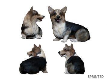 Модель собачки по фото