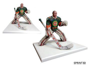 Хоккеист Вратарь