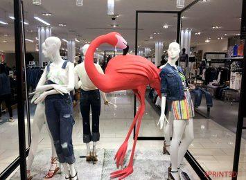 Фламинго в магазине